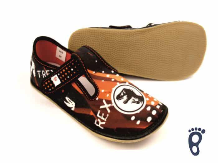 Ef - Chlapčenské papučky - Trex 1